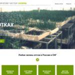Wholesale greens in Russia – ecozelen.ru